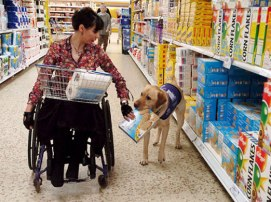 dog-assist-shop