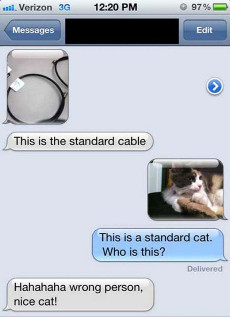 16 Funny Wrong Number Texts - Nice cat!