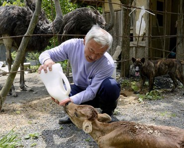 After the Fukushima Disaster, He Went Back to Save the Animals.