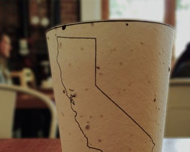 Biodegradable Coffee Cup Will Grow into Flowers and Trees.