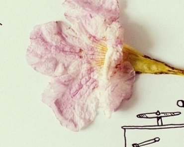 Javier Perez Clever Art Turns Everyday Objects Into Minimal Art.