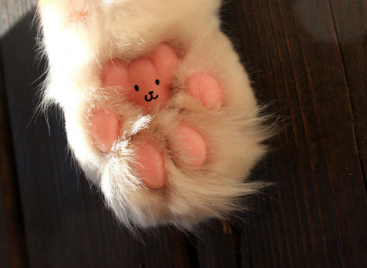25 Things That Can't Be Unseen - Little cat paws look like teddy bears.