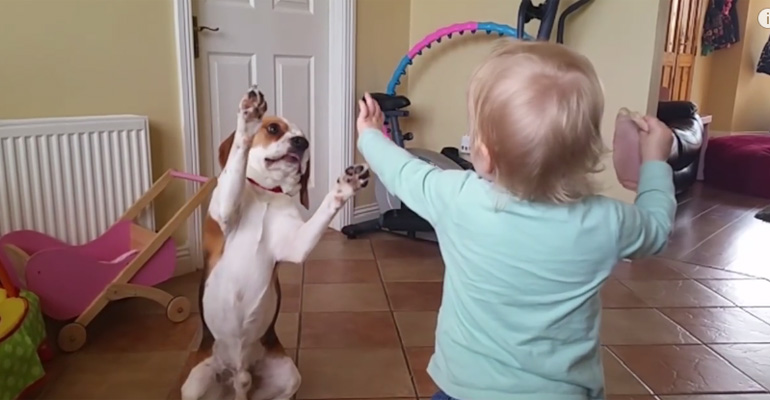 Charlie the Beagle Shows Us That Kids and Dogs Are BFFs.