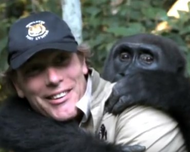 Conservationist Damian Aspinall Is Reunited With a Gorilla.