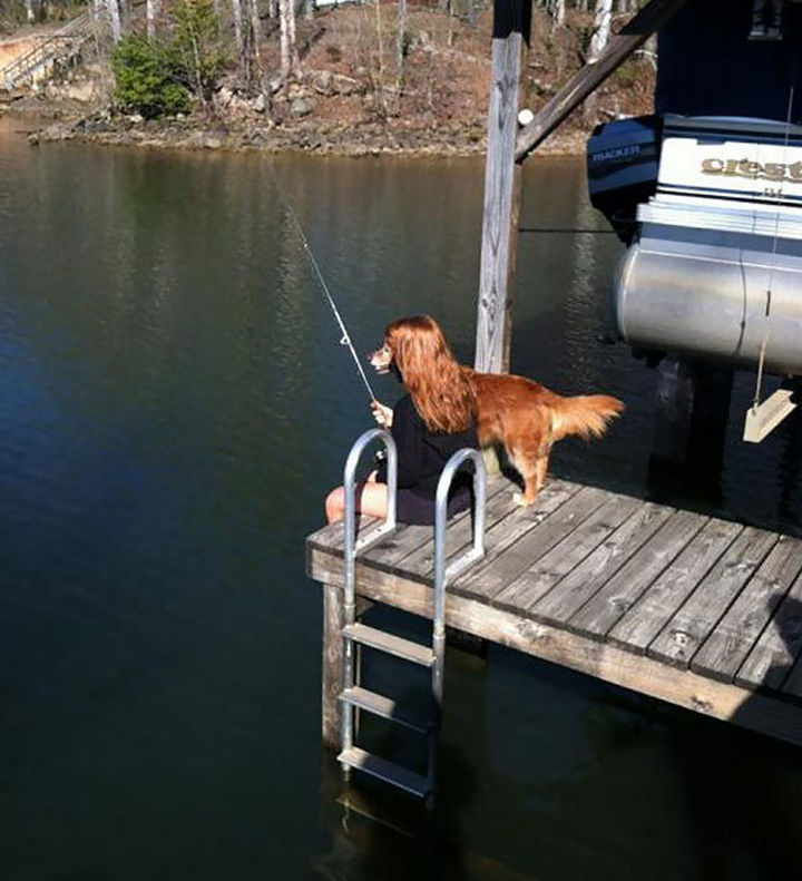 28 Perfectly Timed Photos of People Having a Bad Day - This dog and its human in a perfect spot.