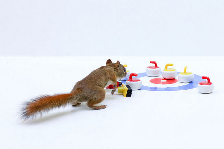 Taking a day to get in some curling practice!