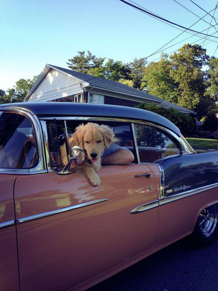 Ray Charles also likes to cruise in style!