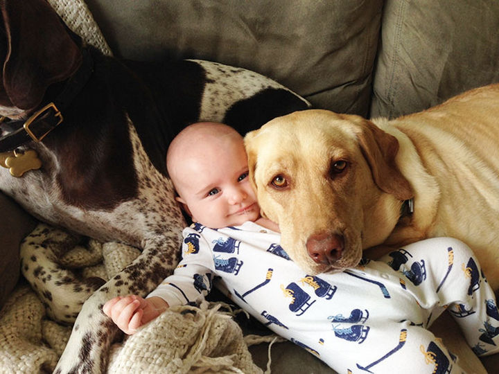 33 Adorable Photos of Dogs and Babies - Getting a cute selfie with the baby.