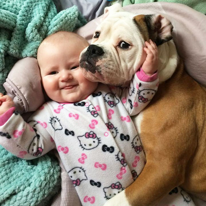 """33 Adorable Photos of Dogs and Babies - """"It is my duty to protect her."""""""