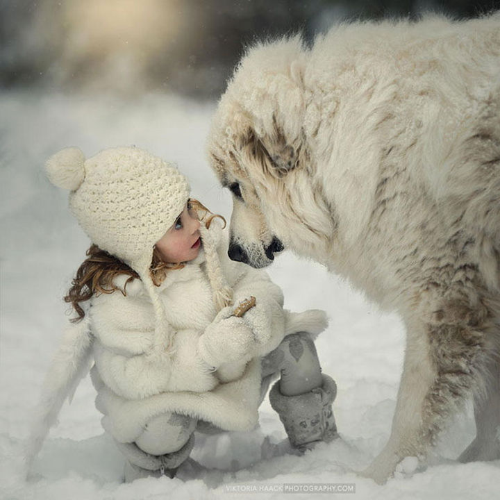 33 Adorable Photos of Dogs and Babies - Enjoying a snow day together.