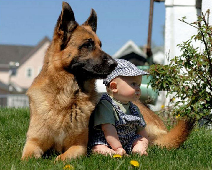 """33 Adorable Photos of Dogs and Babies - """"Don't worry, kid, I got your back."""""""