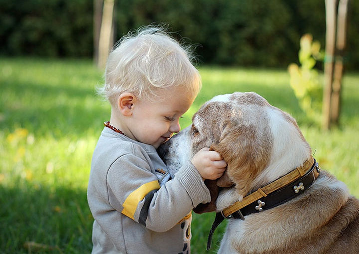 33 Adorable Photos of Dogs and Babies - Sweet friends.