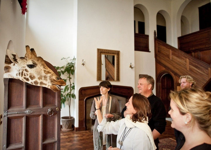 Ten giraffes live on the grounds of Giraffe Manor and they'll often drop by and make you feel welcomed.