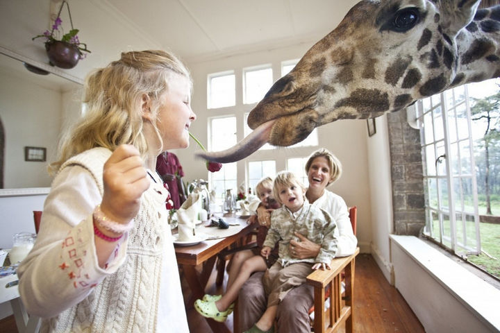 The experience is even more magical for kids and they will love the exciting guided tours.