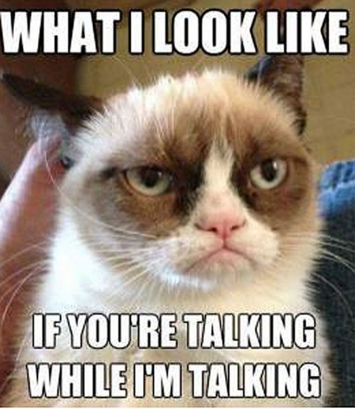 67 Hilarious Teacher Memes - Want to see what grumpy looks like?