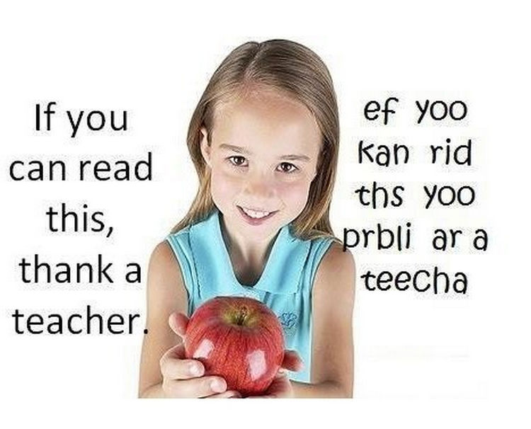 67 Hilarious Teacher Memes - Teachers can read ANYTHING.