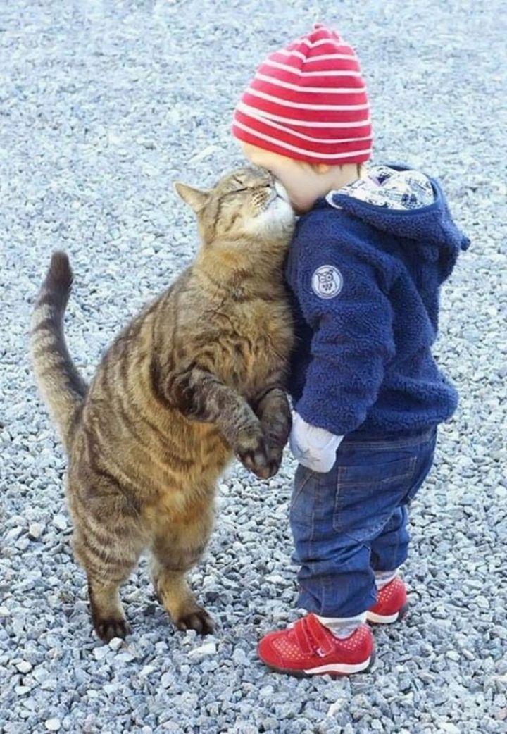 "21 Cats Babysitting Babies - ""I love you too, pumpkin."""