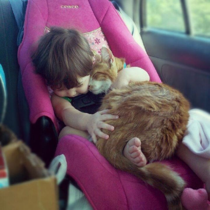 """21 Cats Babysitting Babies - """"Hold me like this forever, OK?"""""""