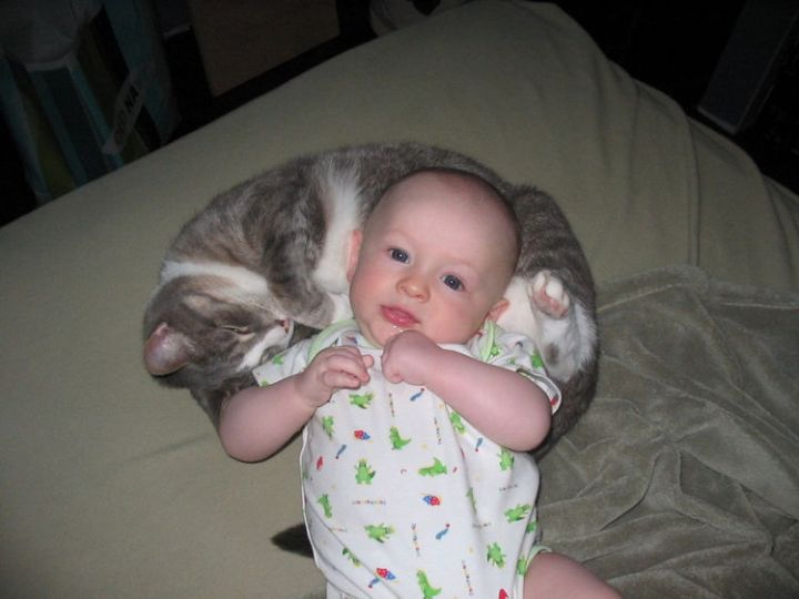 """21 Cats Babysitting Babies - """"It may not be your naptime, but it is mine!"""""""