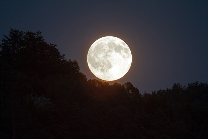 November 14th Supermoon Won't Happen Again Until the Year 2034