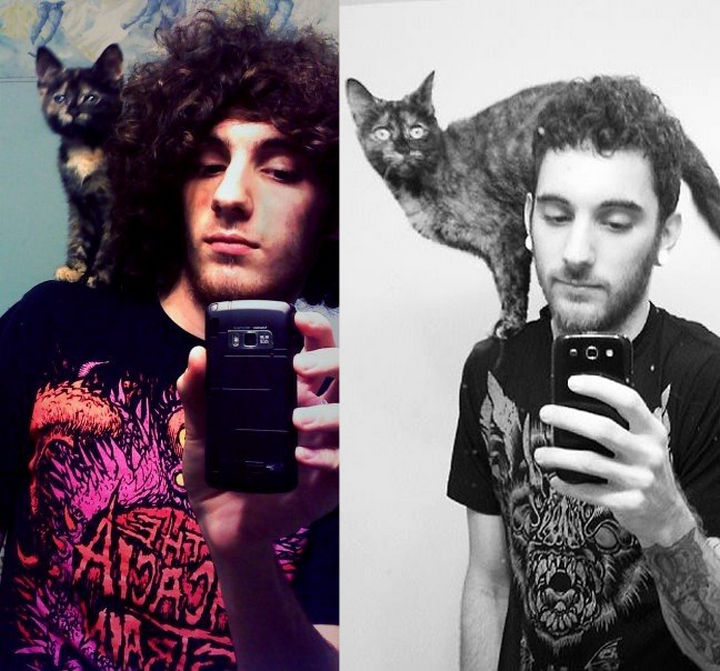 29 Before and After Photos of Family Cats - Having your cat at various stages of your life is priceless.