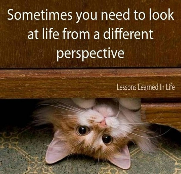 "41 Positive Quotes - ""Sometimes you need to look at life from a different perspective."""