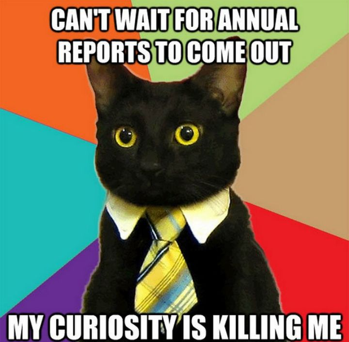 "55 Funny Cat Memes - ""Can't wait for annual reports to come out. My curiosity is killing me."""