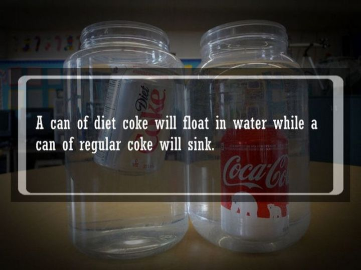 """19 Food Facts - """"A can of Diet Coke will float in water while a can of regular coke will sink."""""""