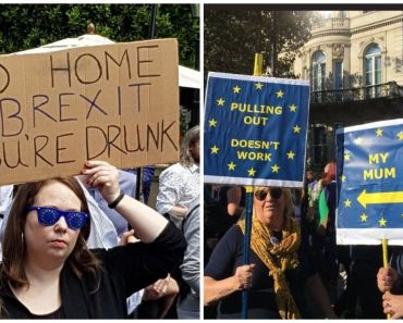 Top 23 Funniest Anti-Brexit Signs Will Make You Smile