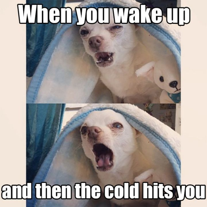 "55 Funny Winter Memes - ""When you wake up and then the cold hits you."""