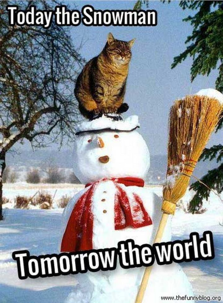 "55 Funny Winter Memes - ""Today the snowman. Tomorrow the world."""