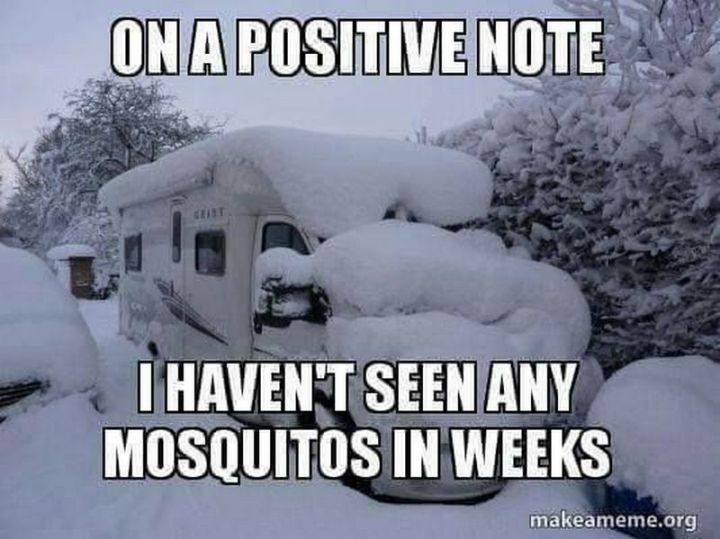 "55 Funny Winter Memes - ""On a positive note, I haven't seen any mosquitoes in weeks."""