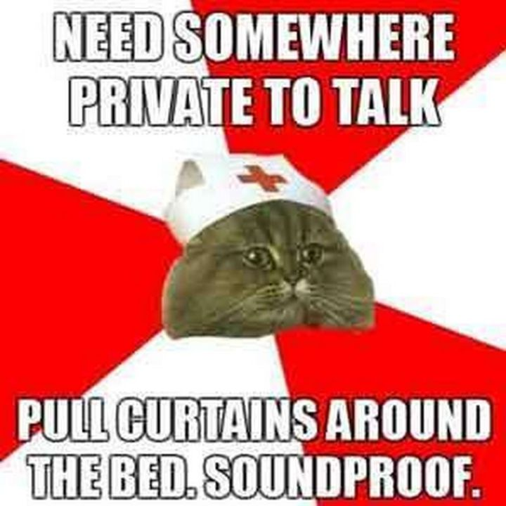 """101 Funny Nursing Memes - """"Need somewhere private to talk. Pull curtains around the bed. Soundproof."""""""