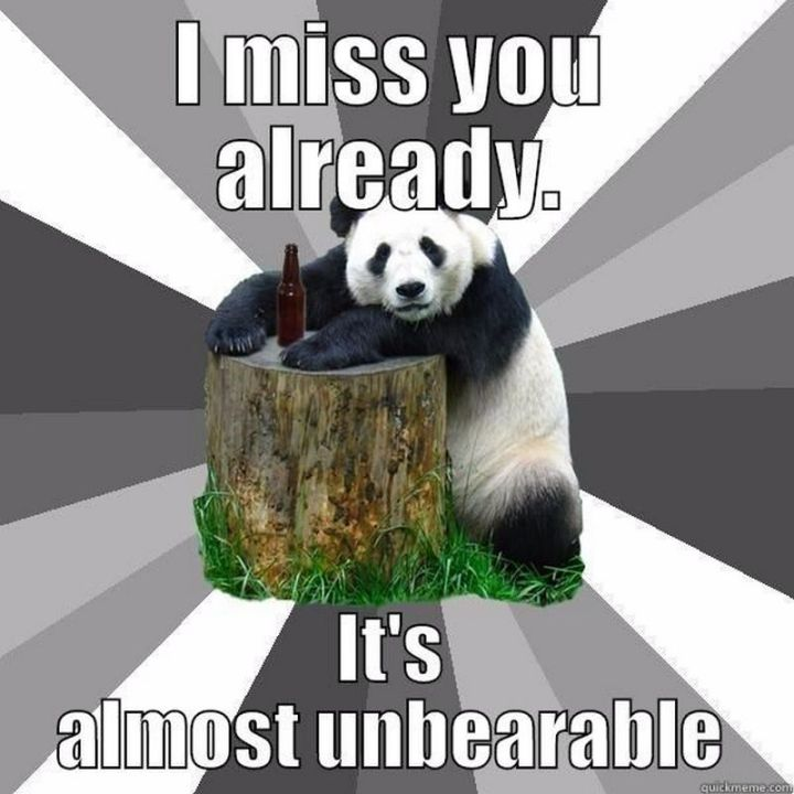 "101 I miss you memes - ""I miss you already. It's almost unbearable."""