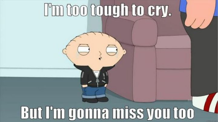 """101 I miss you memes - """"I'm too tough to cry. But I'm gonna miss you too."""""""