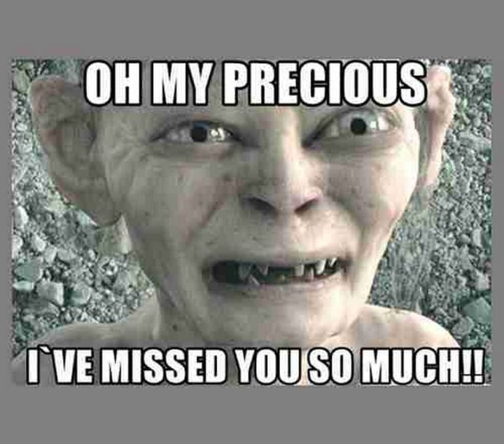 """101 I miss you memes - """"Oh my precious, I've missed you so much!!"""""""