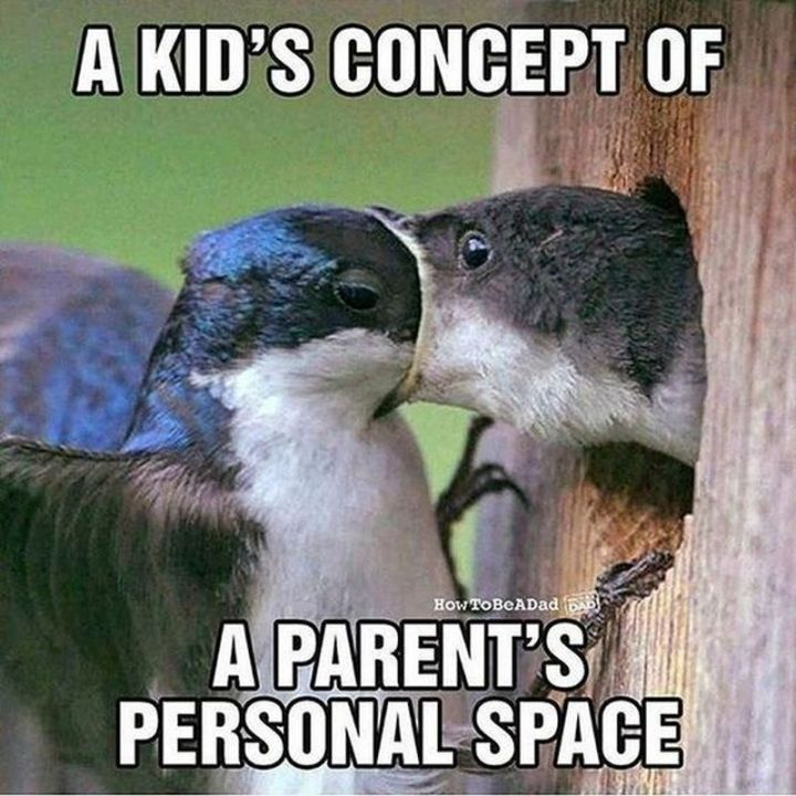 """101 Funny Mom Memes - """"A kid's concept of a parent's personal space."""""""