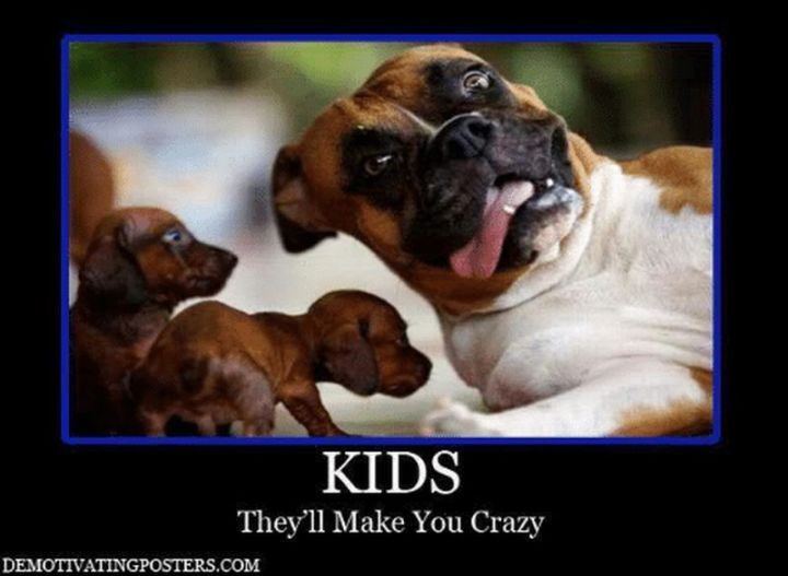 """101 Funny Mom Memes - """"Kids. They'll make you crazy."""""""