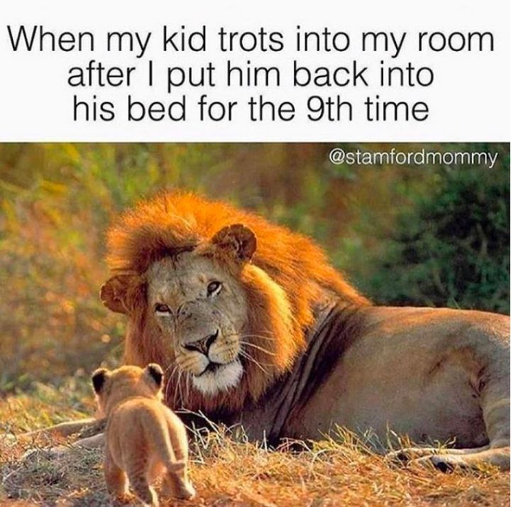 """101 Funny Mom Memes - """"When my kid trots into my room after I put him back into his bed for the 9th time."""""""