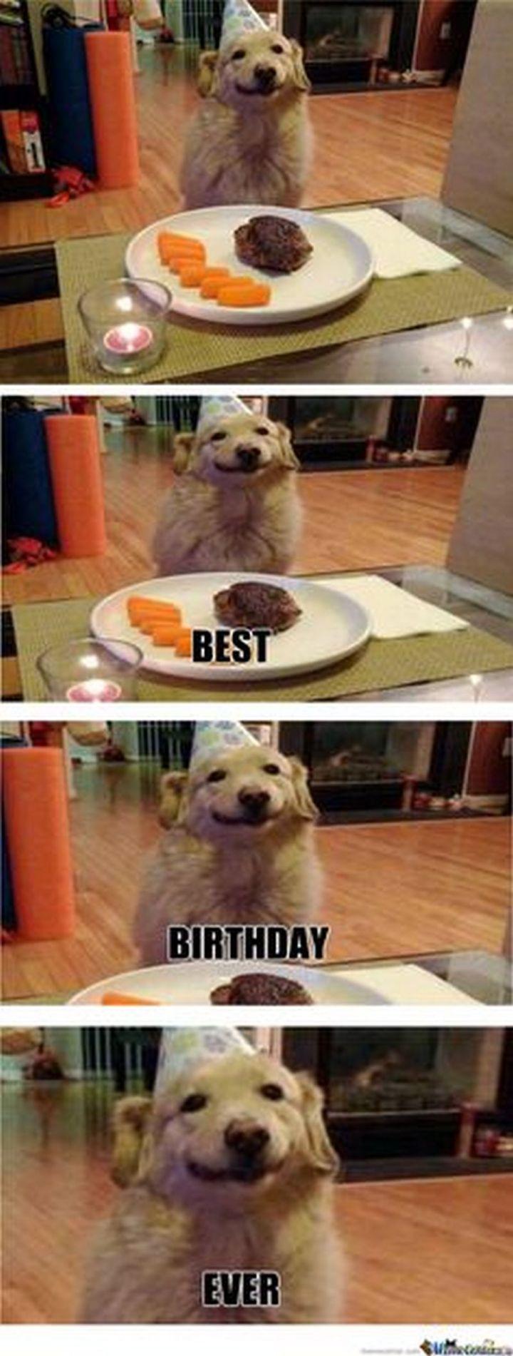 """101 Smile Memes - """"Best. Birthday. Ever!"""""""