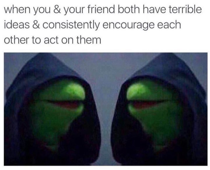 "65 Funny Friend Memes - ""When you and your friend both have terrible ideas and consistently encourage each other to act on them."""