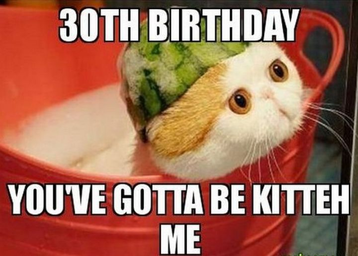 "101 Happy 30th Birthday Memes - ""30th birthday. You've gotta be kitteh me."""