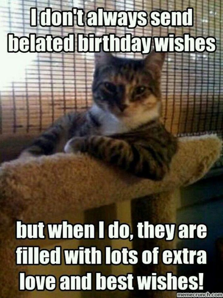 Belated Birthday Meme : belated, birthday, Happy, Belated, Birthday, Memes, Forgot, Winkgo