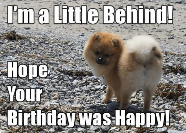 """85 Happy Belated Birthday Memes - """"I'm a little behind! Hope your birthday was happy!"""""""