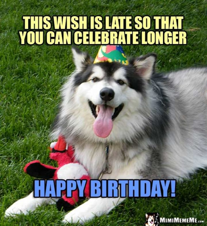 Happy Birthday Meme: Dog Running Happy Birthday Meme