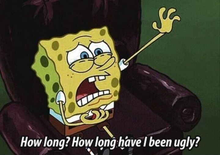"Funny Spongebob Memes - ""How long? How long have I been ugly?"""