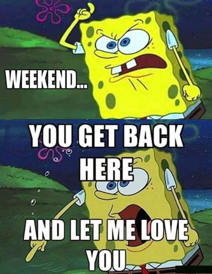 "Funny SpongeBob Memes - ""Weekend...you get back here and let me love you."""