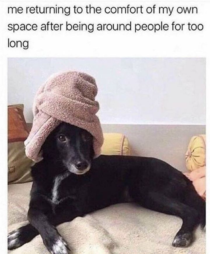 """61 Funny Clean Memes - """"Me returning to the comfort of my own space after being around people for too long."""""""