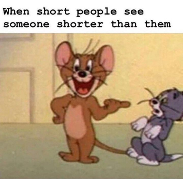 """61 Funny Clean Memes - """"When short people see someone shorter than them."""""""