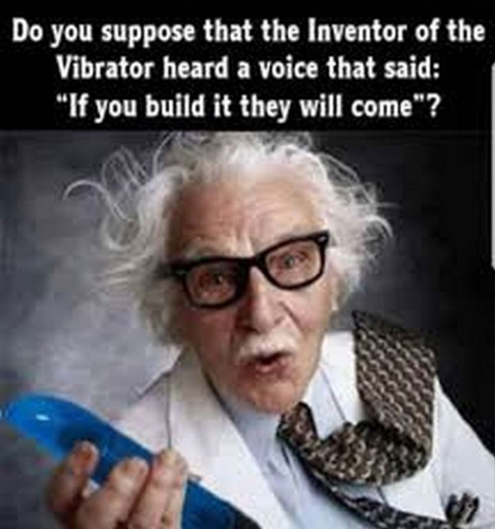 "69 Sexy Adult Memes - ""Do you suppose that the inventor of the vibrator heard a voice that said: 'If you build it they will come.'"""